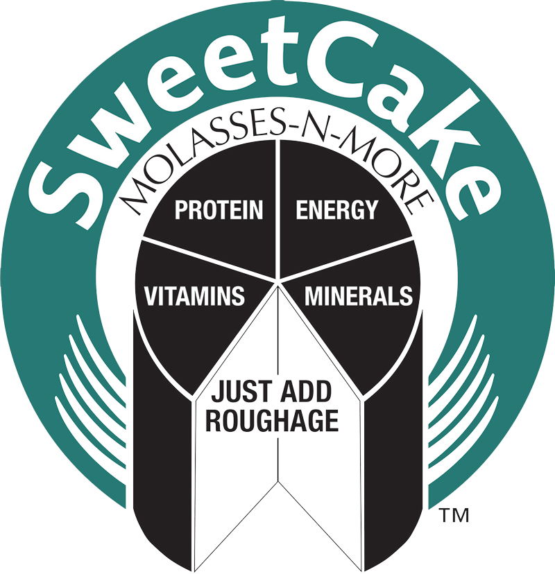 SweetCake Logo vector LARGE